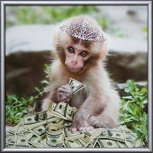 Смешные картинки обезьян с днем рождения